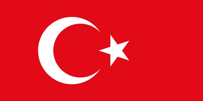 Vehicle registration certificate of Turkey